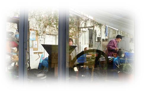 greenhouse-unstone-grange